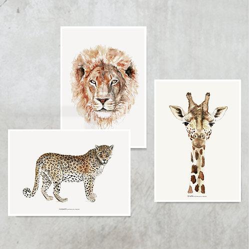3x mini ARTprint A5 | Jungle animals