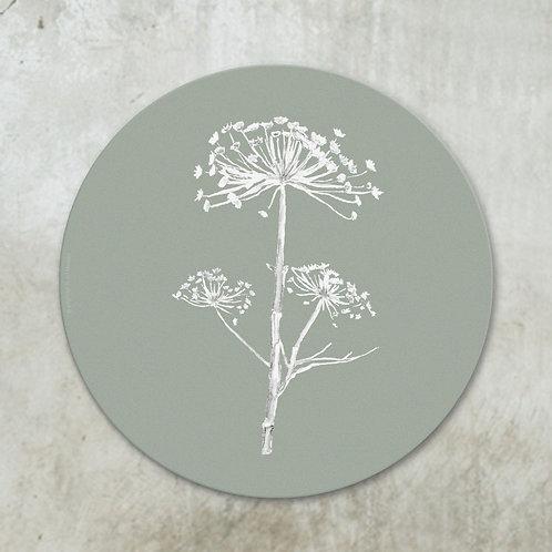 Dried hogweed white on  green | Deco circle