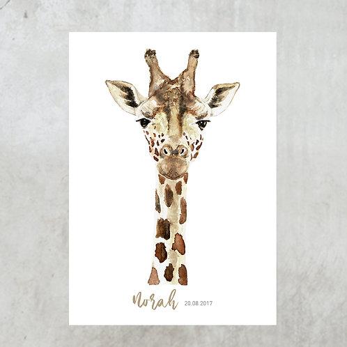 Giraffe A3 | Met naam en geboorte datum