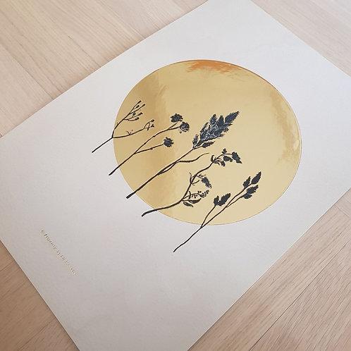 Dried flowers beige | Gold foil A5