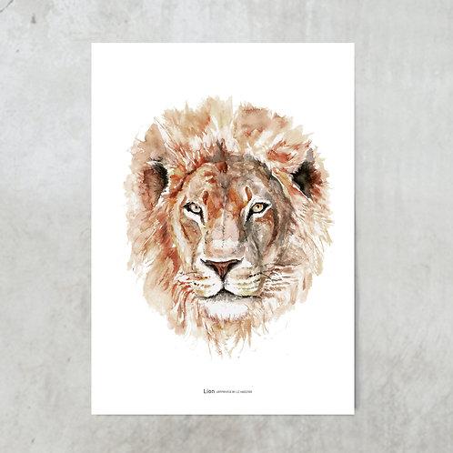 Lion | Tuinposter 300x420mm