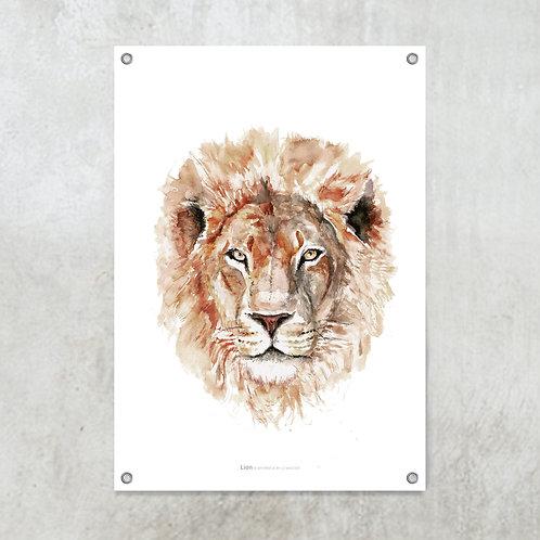Lion | Tuinposter 70x100cm