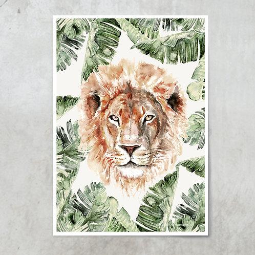Lion Strelitzia