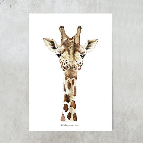 Giraffe | Tuinposter 300x420mm