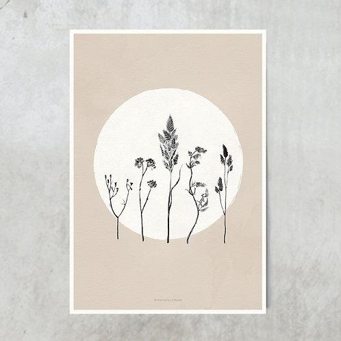 Dried flowers circle | Black on nude