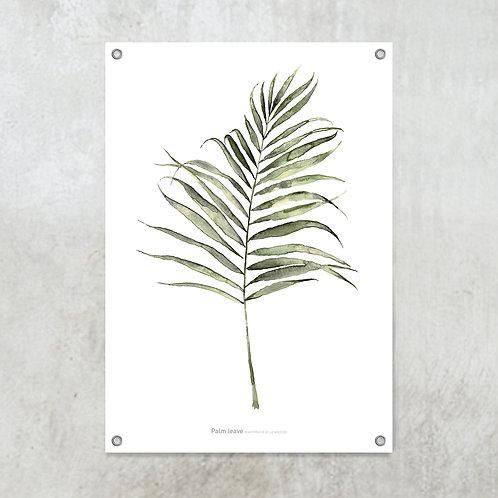 Palm leave    Tuinposter 70x100 cm