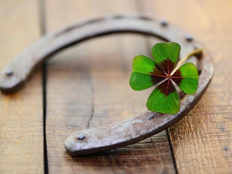 Discovering the Leprechaun: How Our Mindset Shapes Our Prosperity