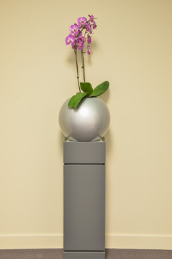 Orchid in Earth Sphere Planter