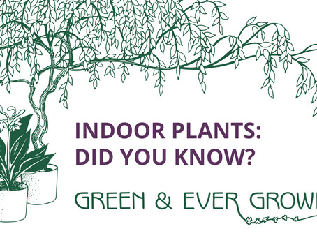 Welcome to the Green & Ever Growing Blog! Did you know...?