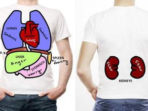ÓRGÃOS E EMOÇÕES: A que emoção cada órgão corresponde?