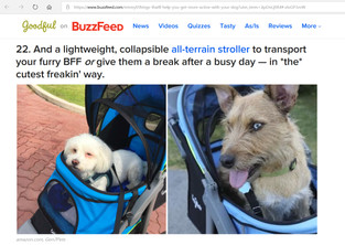 Gen7Pets Stroller (R) Featuring the World-Famous Bob Mackie