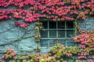 Autumn in Oslo, Norway