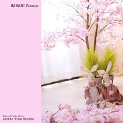 little tree hanami picnic set.jpg