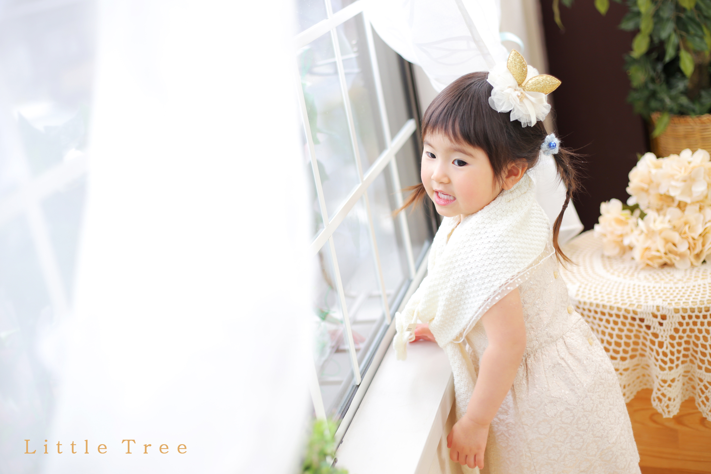 littletree junior54.jpg