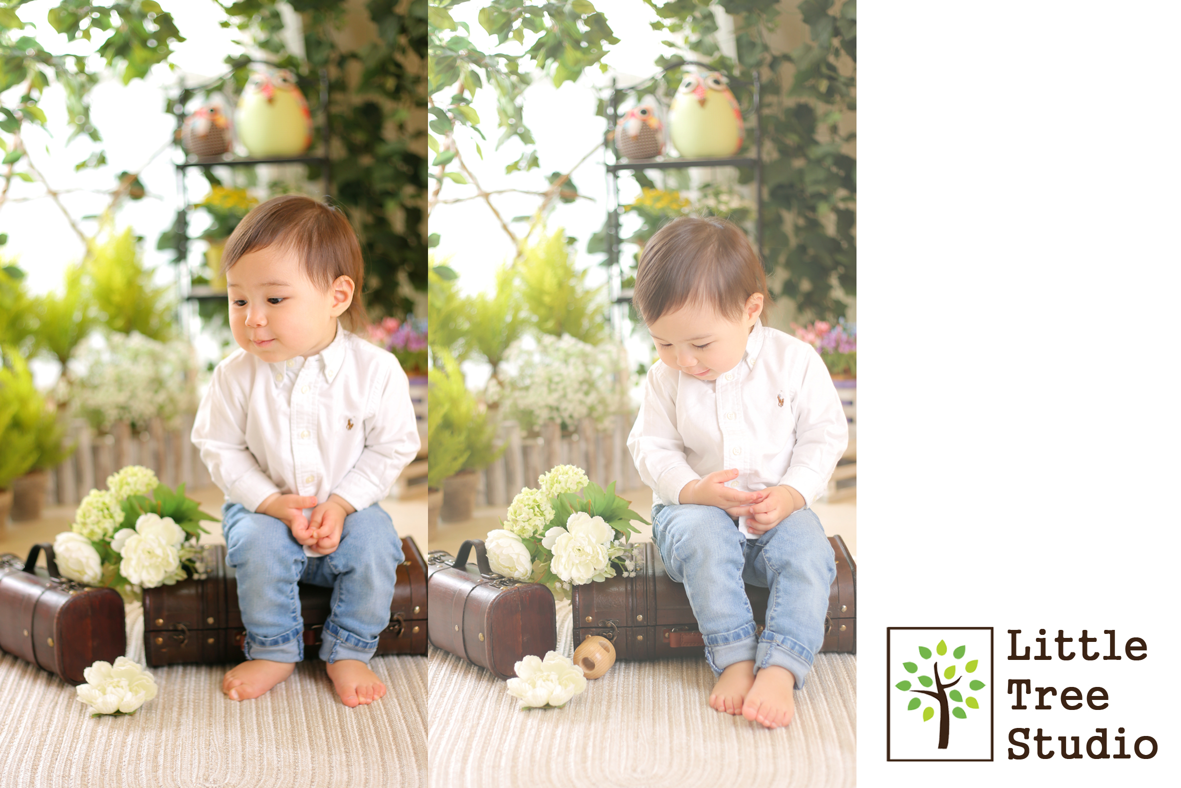 littletree baby146