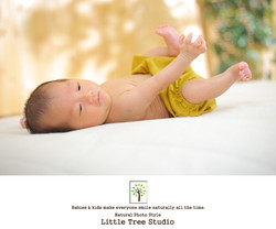 littletree new born23