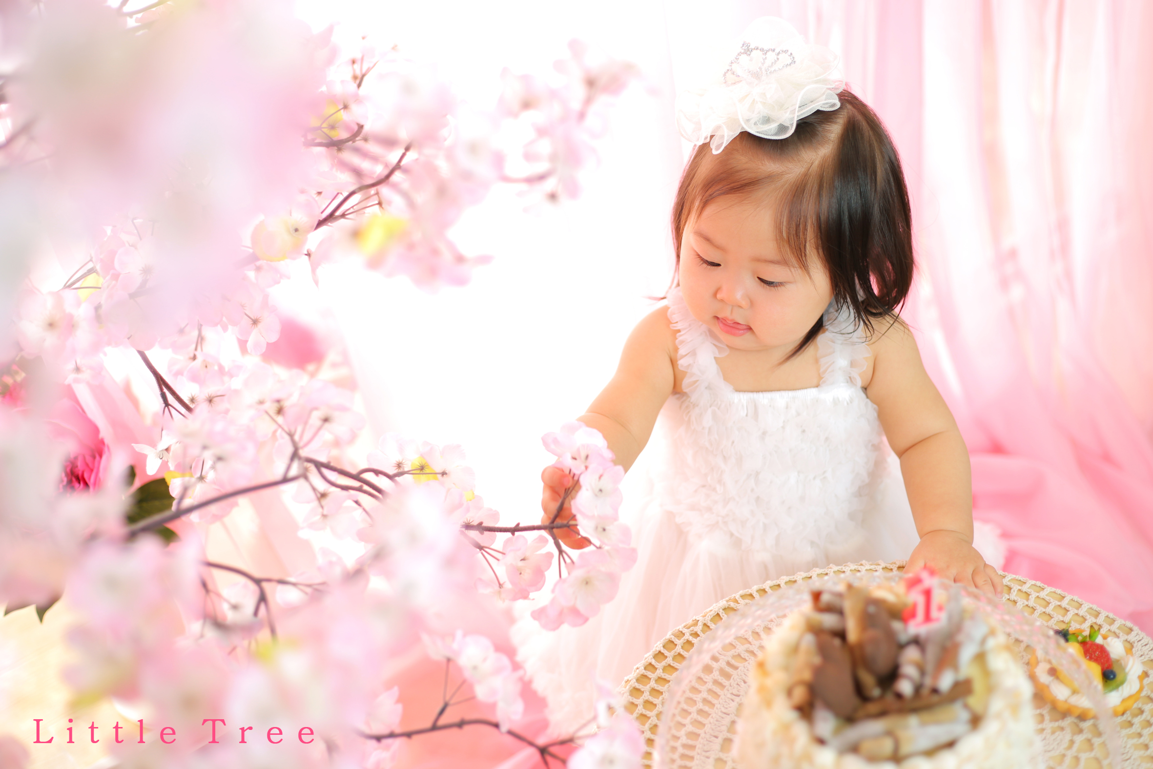 littletree baby181
