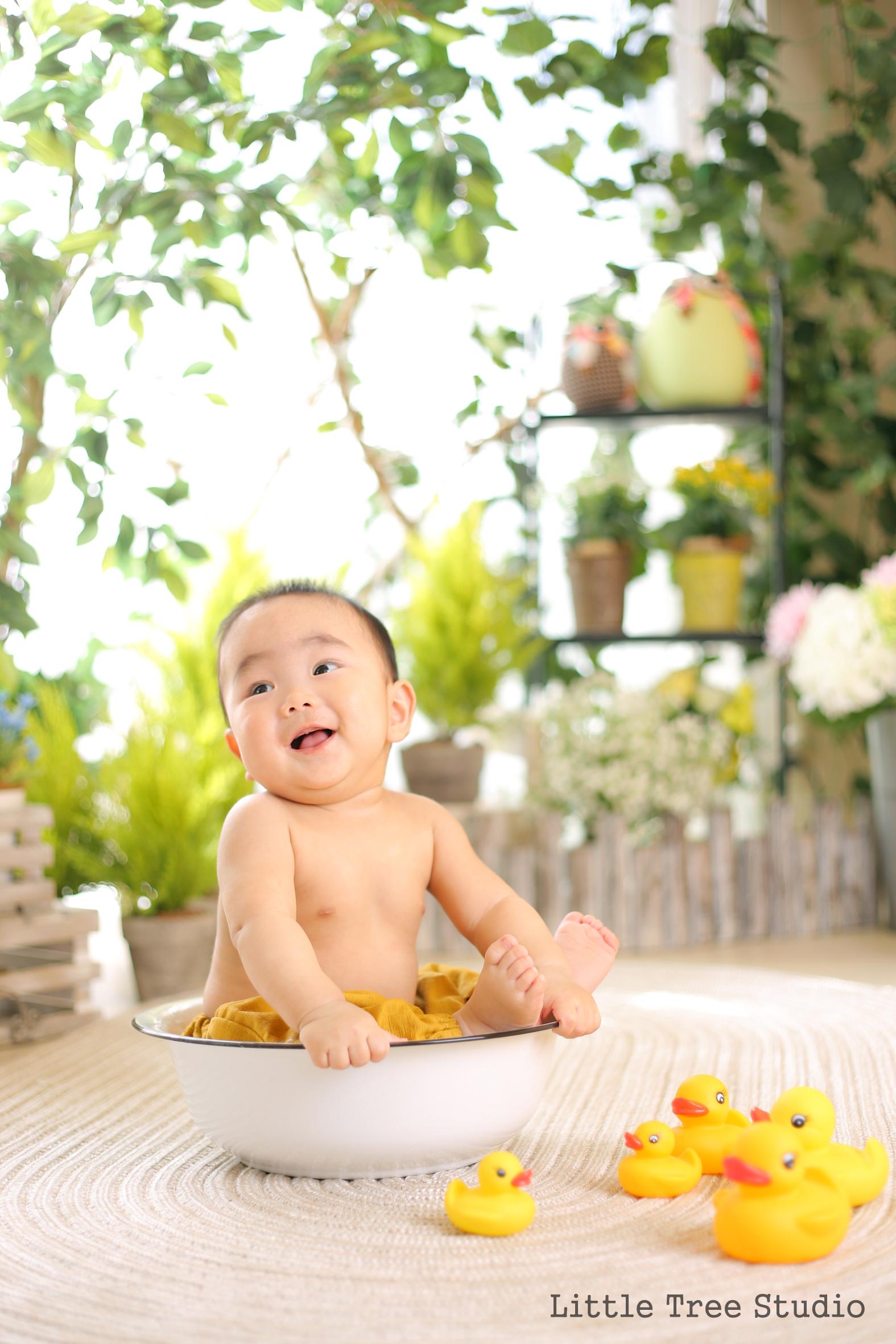 littletree baby152