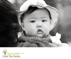 littletree baby118
