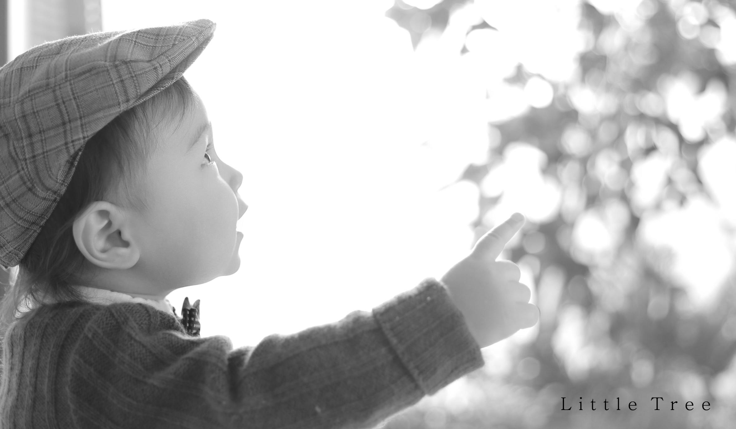 littletree baby145