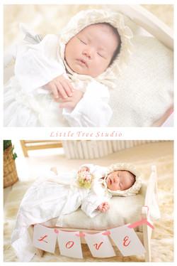 little tree new born6.jpg