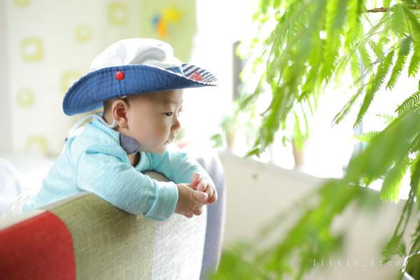 littletree baby203.JPG