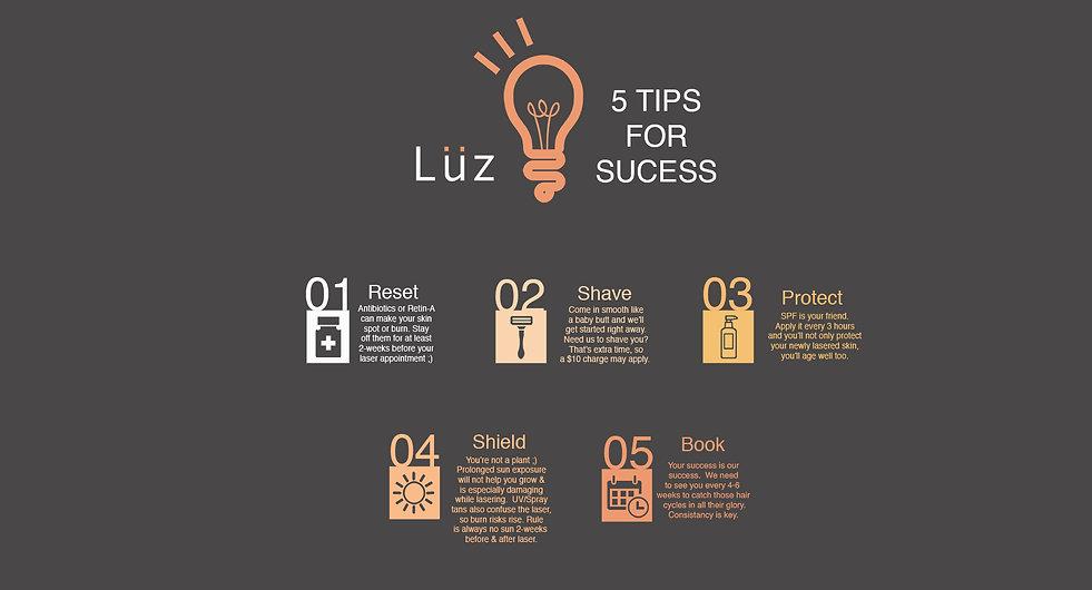 LuzHowItWorks5 copy.jpg