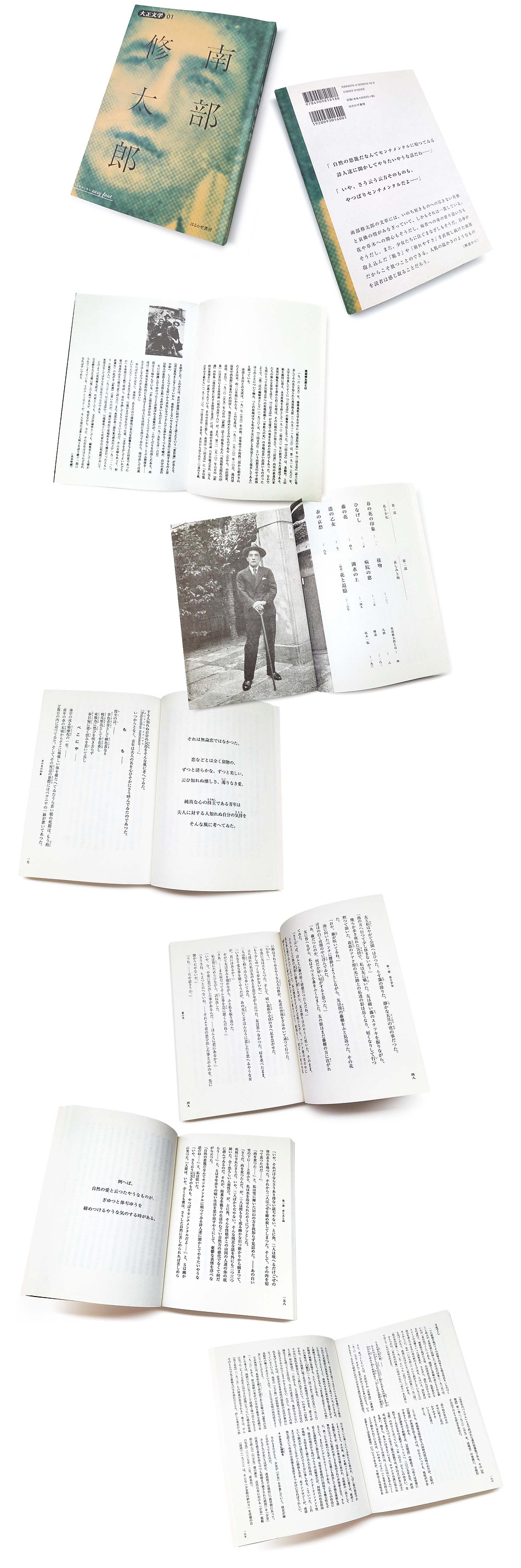 books_taishonanbu_more01-08B.jpg