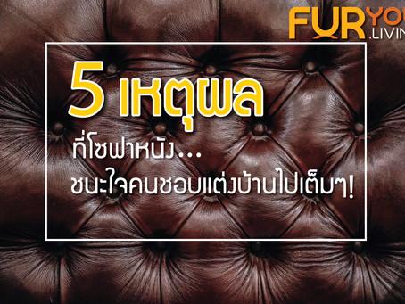 5 เหตุผลที่โซฟาหนัง ชนะใจคนชอบแต่งบ้าน