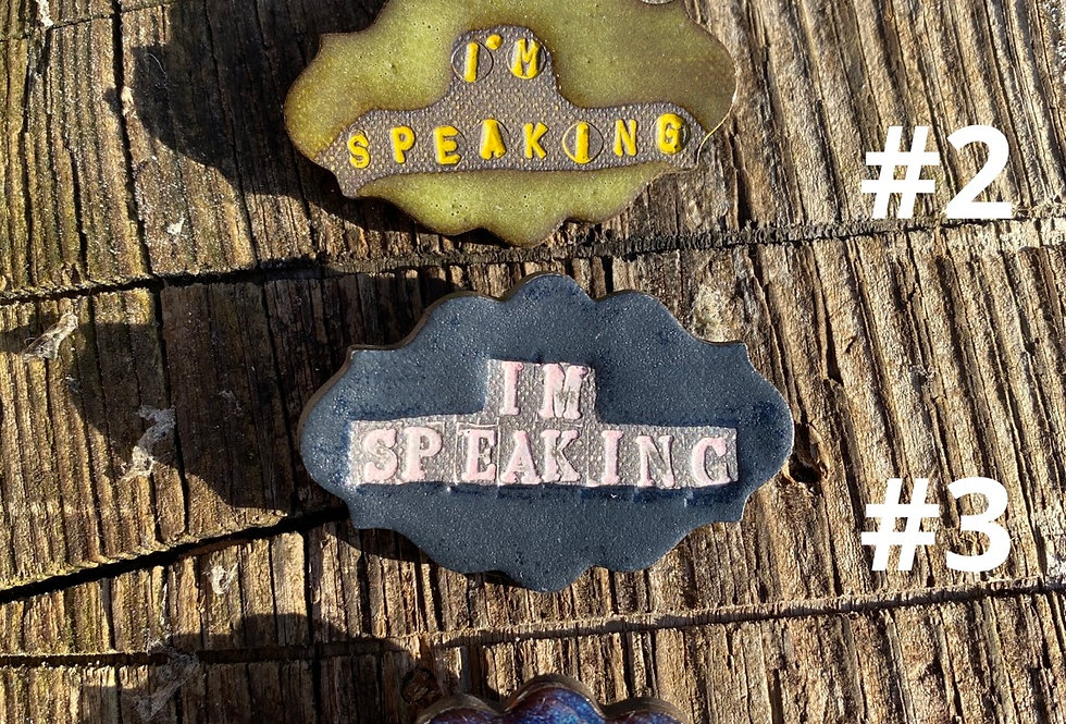 I'm Speaking Brooches