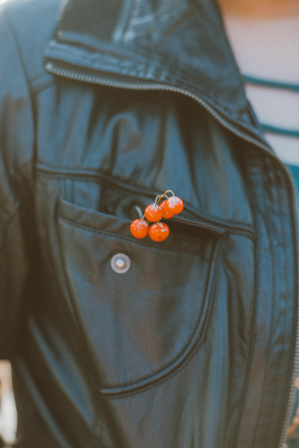 Fall lifestyle photography by Anna Gutermuth.