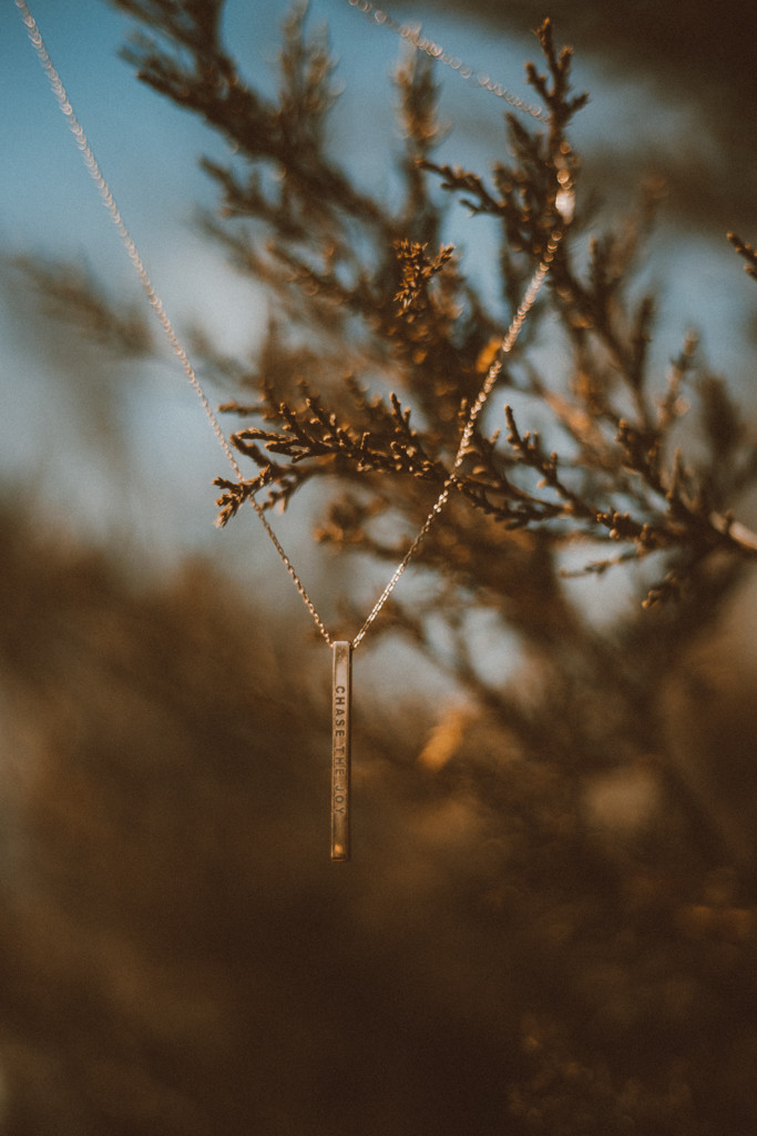 """Necklace that reads """"Chase the Joy"""" hanging in a bush. Lifestyle photography by Anna Gutermuth."""