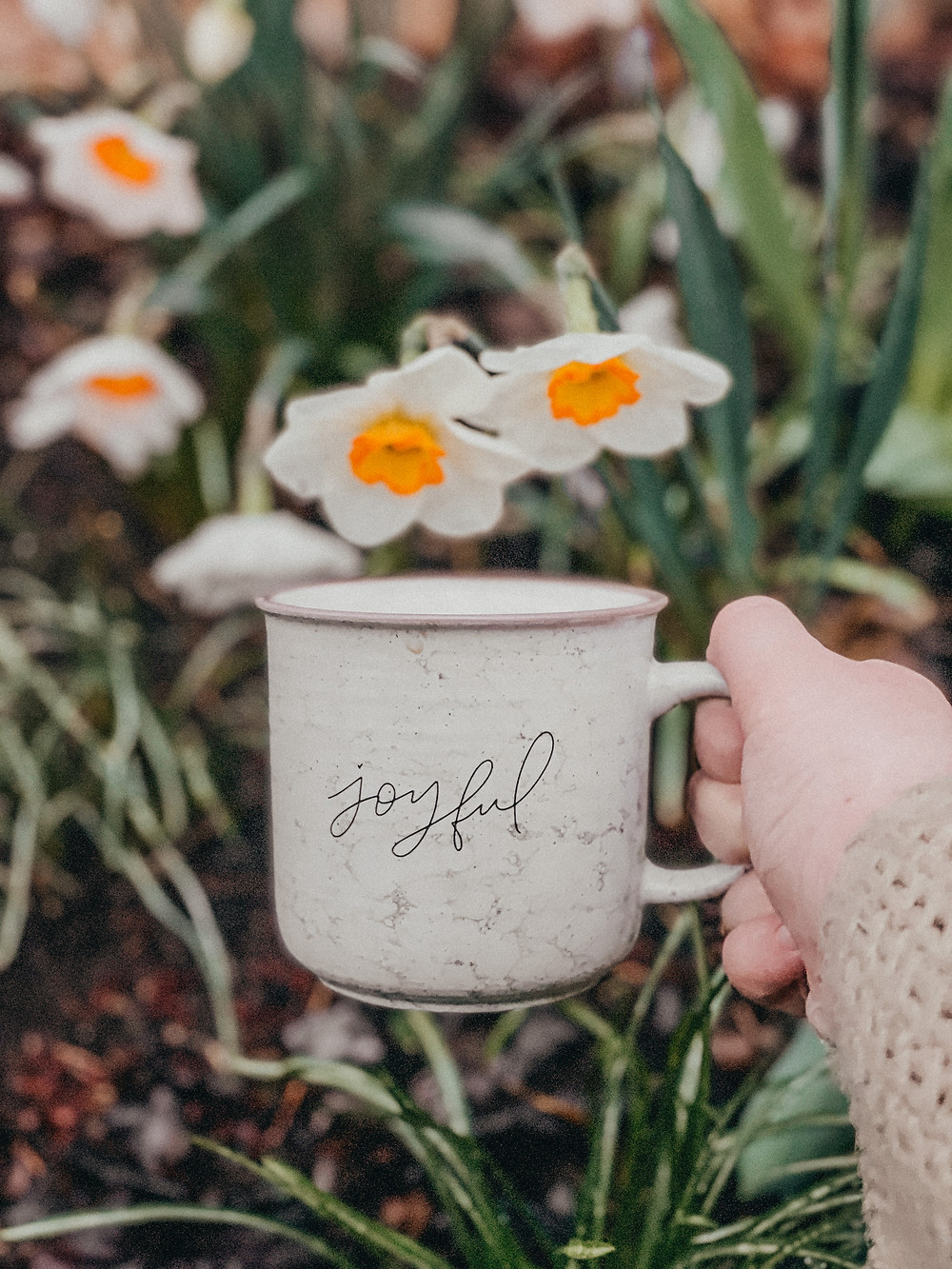 Joyful script on a marbled coffee mug in front of daffodils blooming. Behind the scenes at Anna Gutermuth Photography.