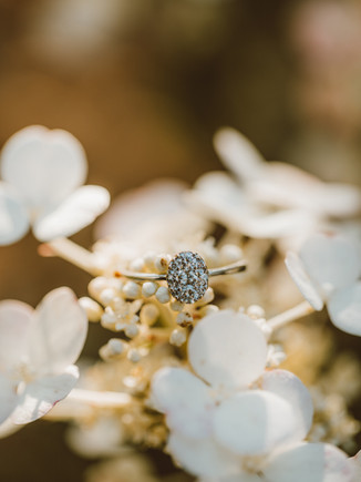 A Year in Review: Engagement Rings | Wisconsin Wedding Photography