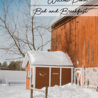 Willow Pond Bed and Breakfast | Weyauwega, WI | Wedding Photography