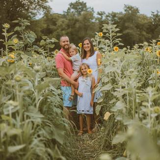 Oak Rest Farms Sunflowers   Burlington, WI   Lifestyle Family Photography   Walsh Family