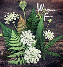 wildflower and fern.png