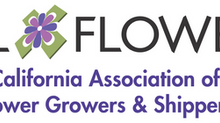 Meet CalFlowers, our Supporting Sponsor
