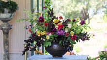 Floral Design with Filoli's Emily Saeger