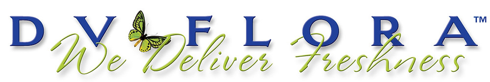 DV Flora Logo