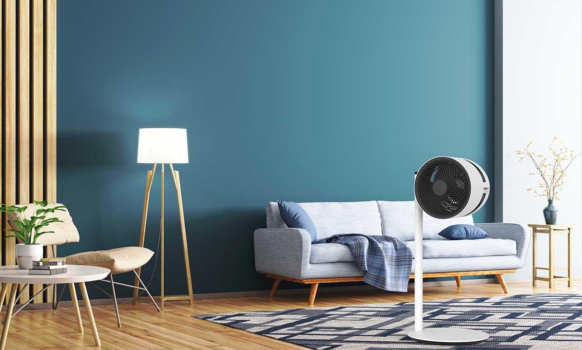 F220_BONECO_image_livingroom2_lowres.jpg