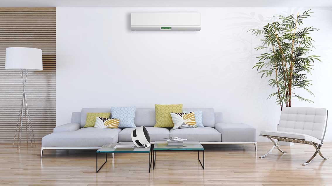 F100_BONECO_Image_Livingroom_03_lowres.j