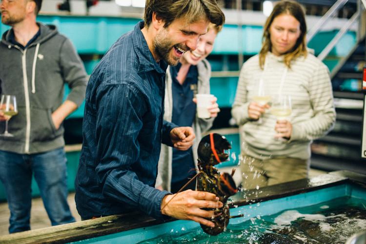 choose lobster in belfast maine