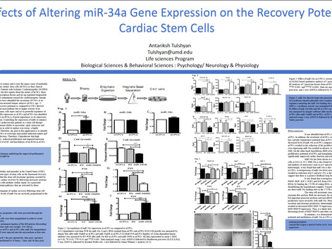 The Effects of Altering miR-34a Gene Expression by Antariksh Tulshyan