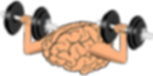 brain-new.png