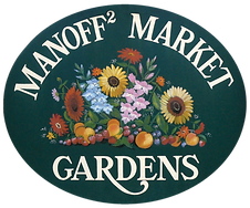 02_Manoff-logo.png