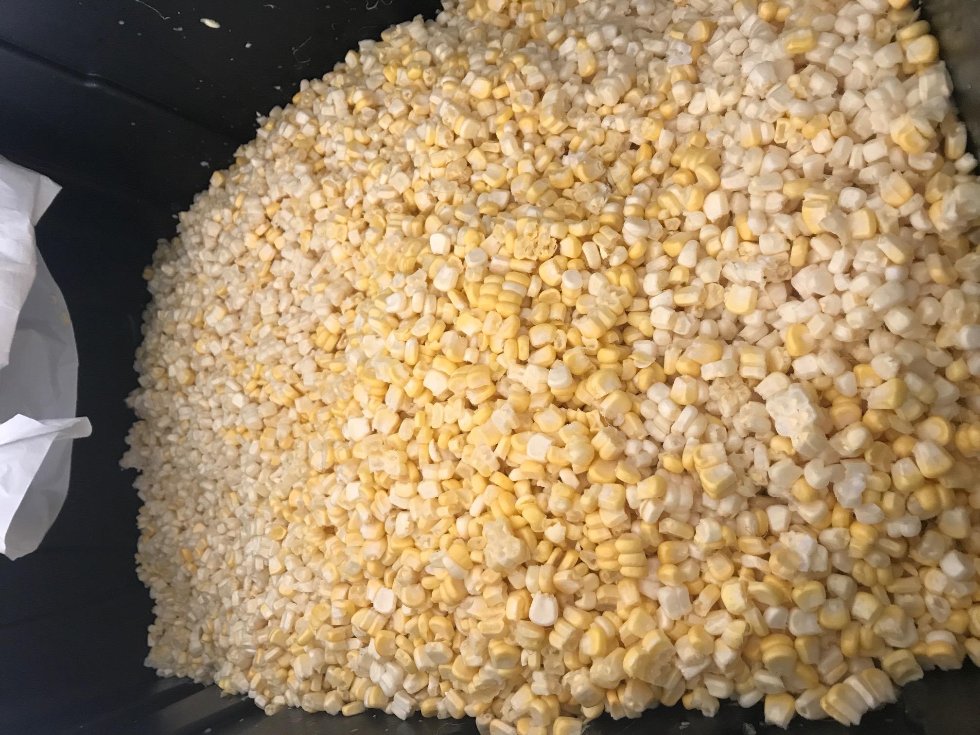 Non-GMO White Corn