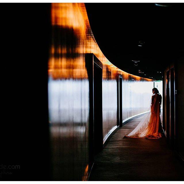 Организация _familyekb #свадебныйфотографекатеринбург #свадебноефото #екб #фото #foto #weddingphotog