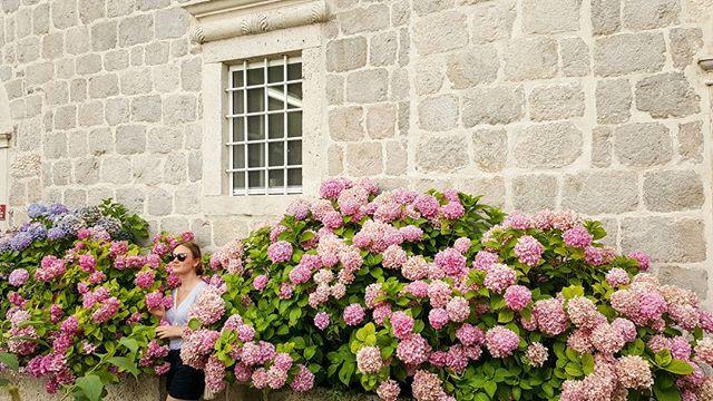 Где-то в садах Пераста))) Some were at the gardens of Perast #wedding #weddingphotographer #weddingp