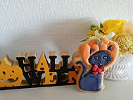 姫路 アイシングクッキー がぼちゃねこ